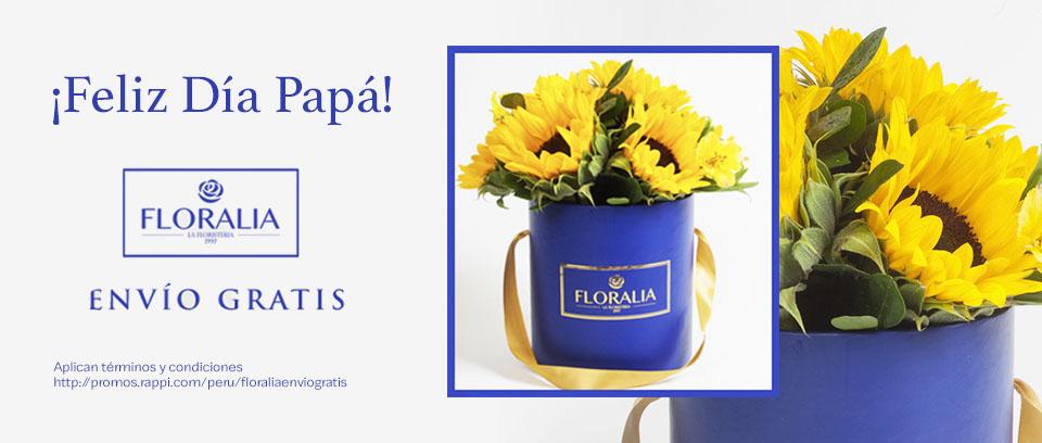 [REVENUE]-B3-floraria_rappimall-Floralia