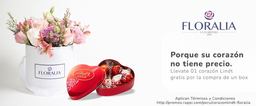 [REVENUE]-B5-floraria_rappimall-Floraria