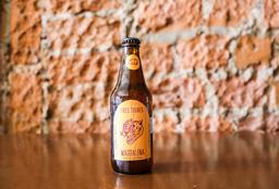 Cerveza Artesanal Magdalena Tres Tigres