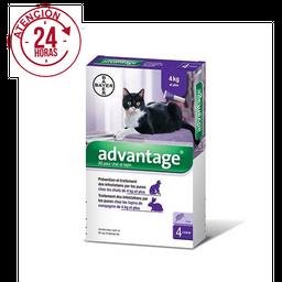 Antipulgas para Gatos ADVANTAGE (4-8 kg)
