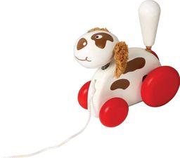Mascota de jalar Perro