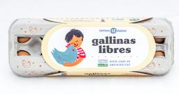 Huevos x12 - Gallinas Libres
