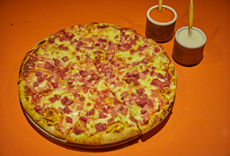 Pizza Especial Mediana