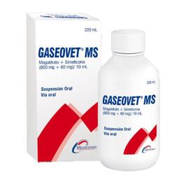 Gaseovet MS Suspensión