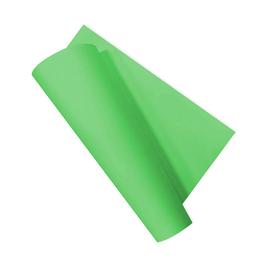 Cartul Escolar Plusx2 Verde Claro 5Ox65