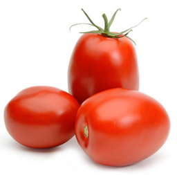 Tomate Italiano