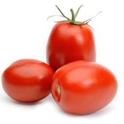 Tomate Italiano Siembra Dorada