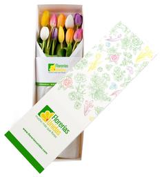 Caja con 10 Tulipanes