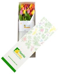 Caja con 15 Tulipanes