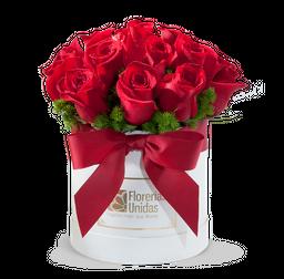 16 Rosas