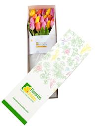 Caja con 20 Tulipanes