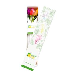 Caja con 5 Tulipanes