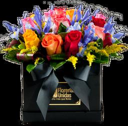 12 Rosas Colores e Iris
