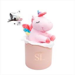Teddy Box Unicorn