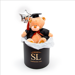 Teddy Box Graduado