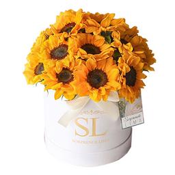 Box Sunflowers