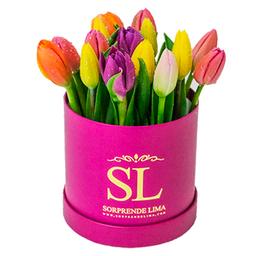 Mini Box Full Tulips