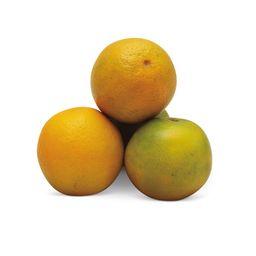 Naranja Extra Para Jugo X Kg
