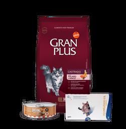 Maskota Pack Gran Plus Castrado Salmón 10Kg+Revolution+Livelong