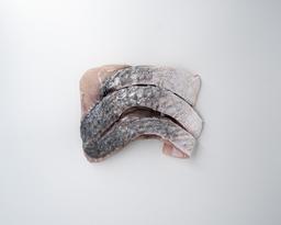 Filetes de Corvina