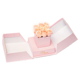 Selene Box
