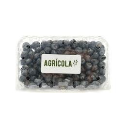 Arándanos frescos orgánicos Agrícola 500 g
