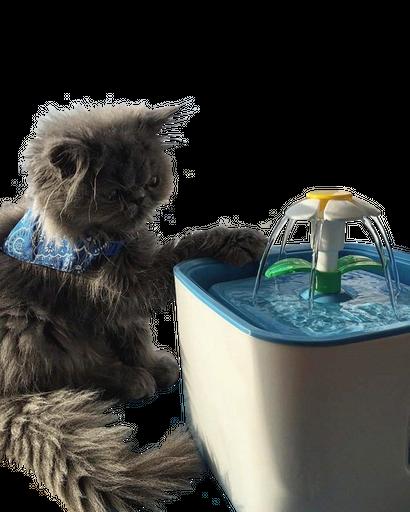 Tecnopets Bebedero Automático Para Mascotas Celeste