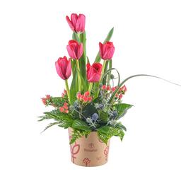 Sombrerera Con 5 Tulipanes Rojos