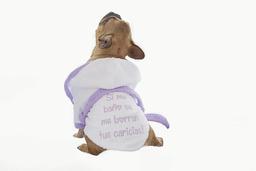 Don Gato Pets Care Bata de Baño Para Perro Bordada (Hembra)
