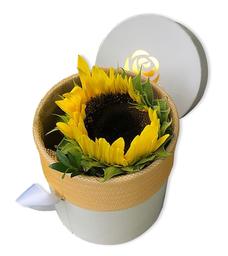 Mini 101 - SunFlower